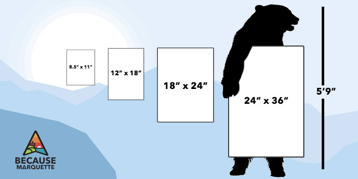 Bear holding posters showing poster size chart